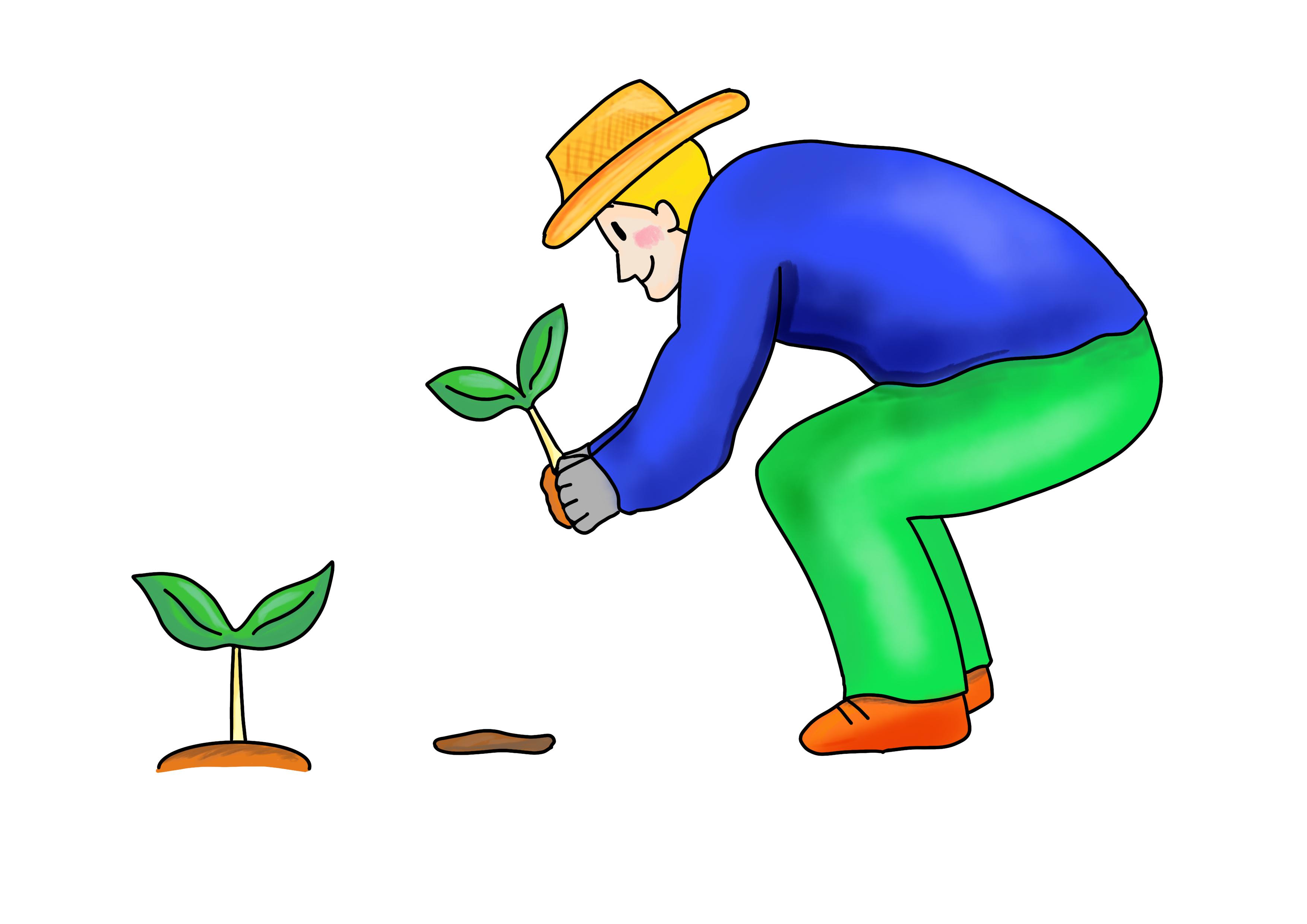 30課イラスト【植える】