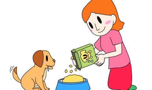 41課イラスト【犬に餌をあげる/餌やり】