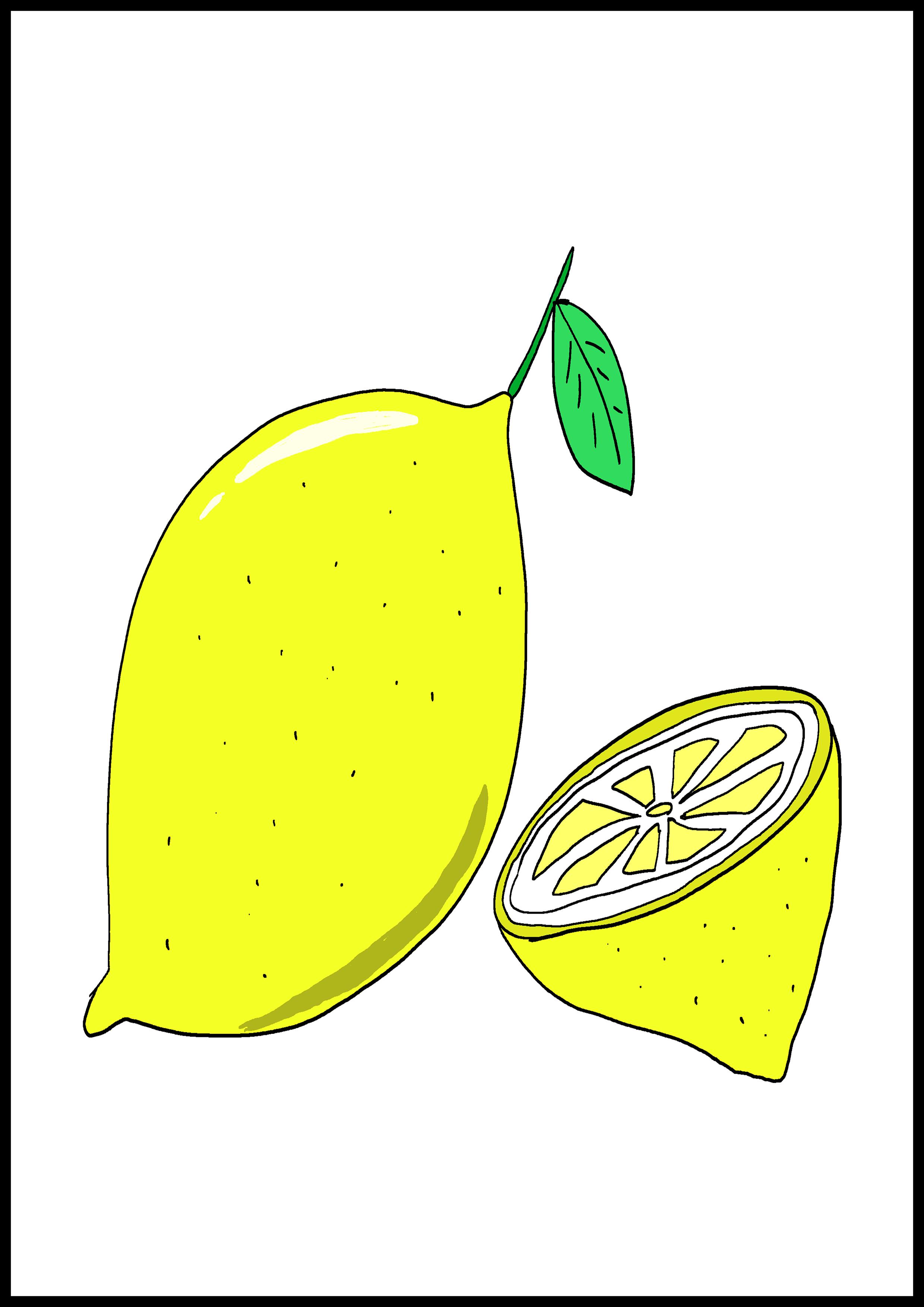 カルタイラスト【レモン】
