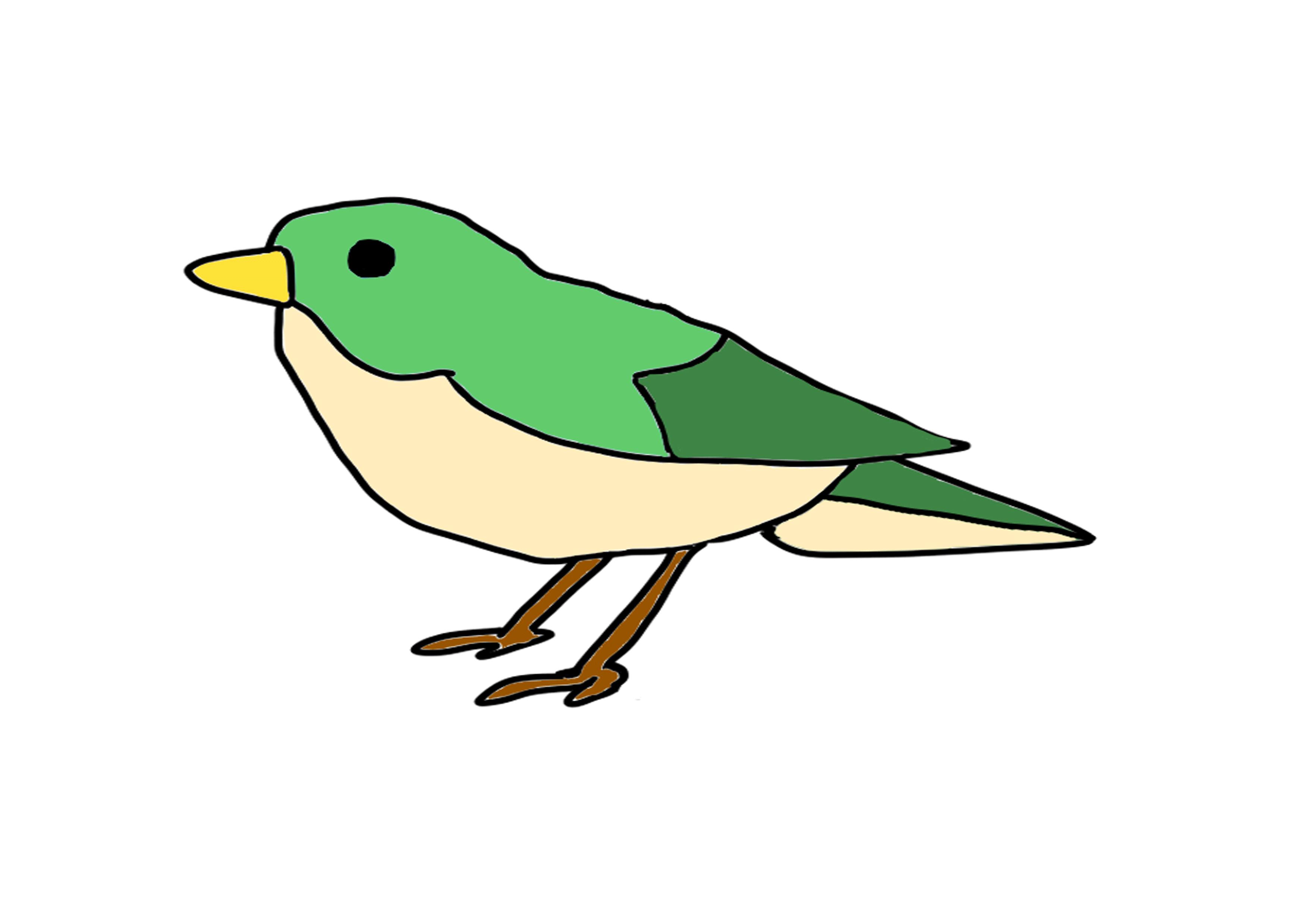27課イラスト【鳥】