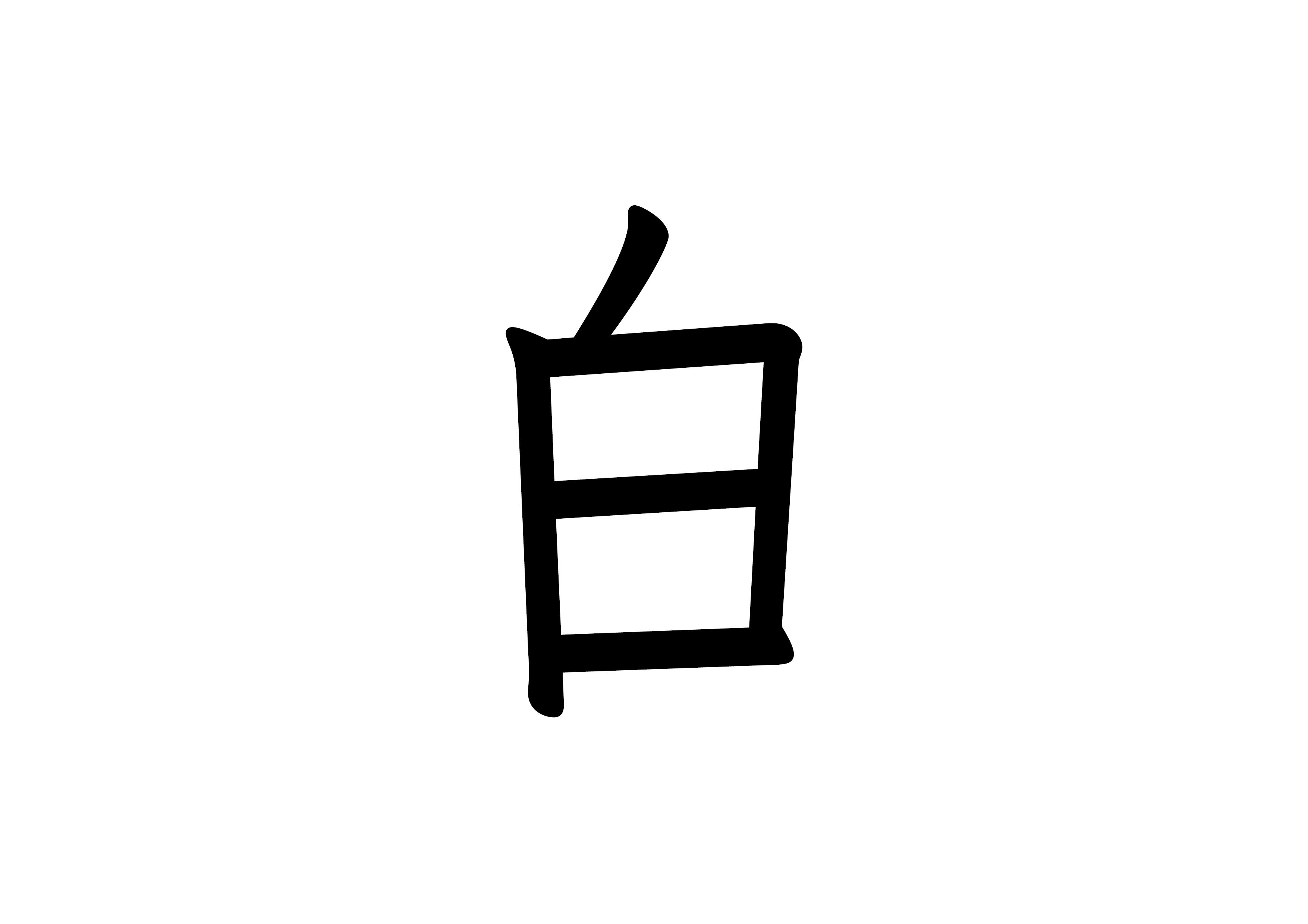 34課フラッシュカード 【白】