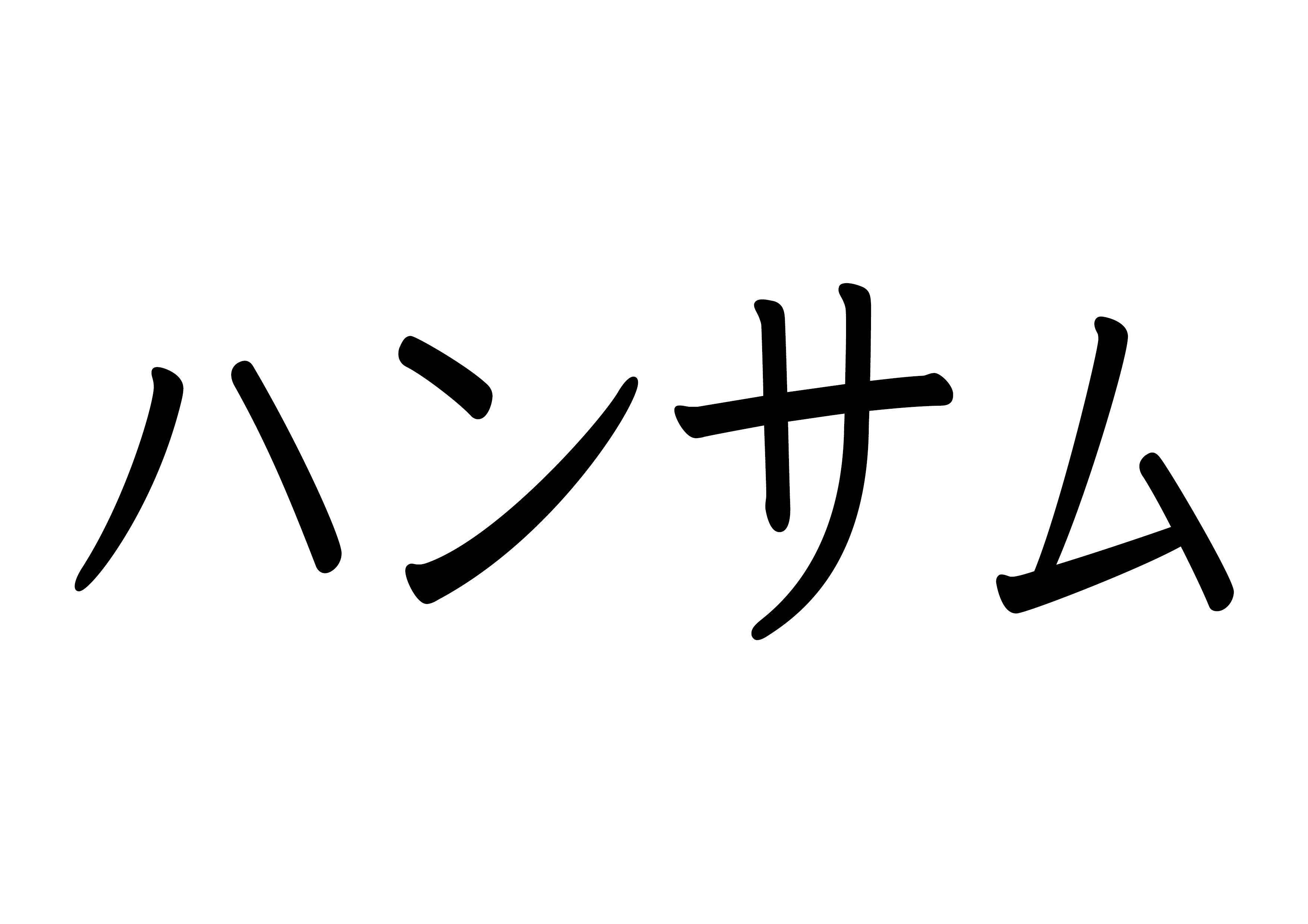 カタカナ【ハンサム】